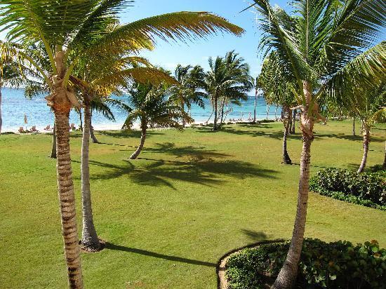 Tortuga Bay, Puntacana Resort & Club: vista do nosso quarto