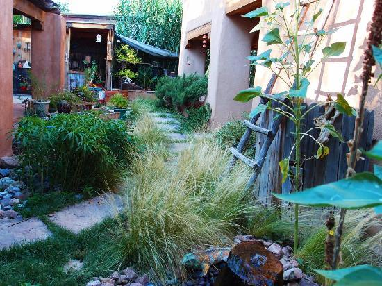 Adobe Nido Bed & Breakfast: Looking across the garden, filled with Southwestern plants, fountains, & more