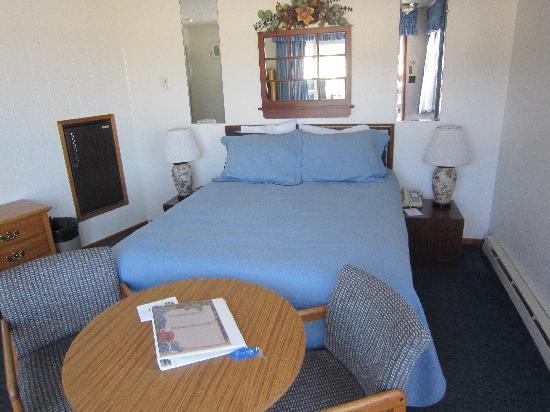 Webb's Scenic Surf Motel: studio bedroom