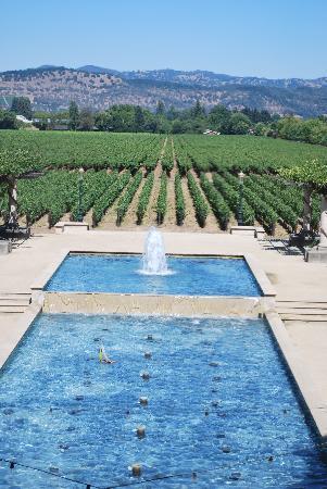 Napa Valley Wine Country Tours: Rubicon