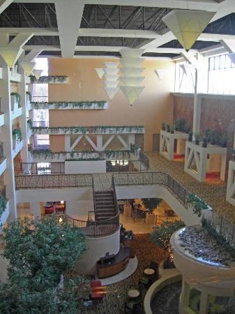 Hilton Stockton: Interior view