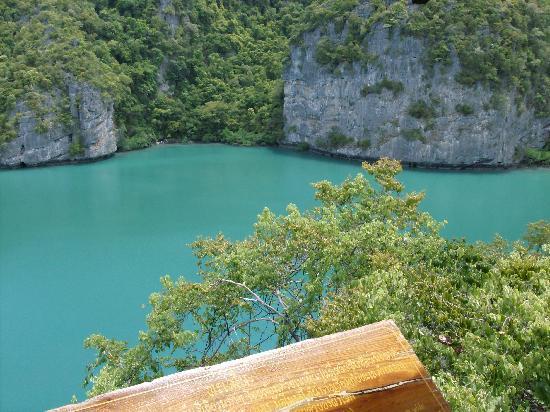 Chaweng, Thailand: Scorcio nei pressi di ko samui