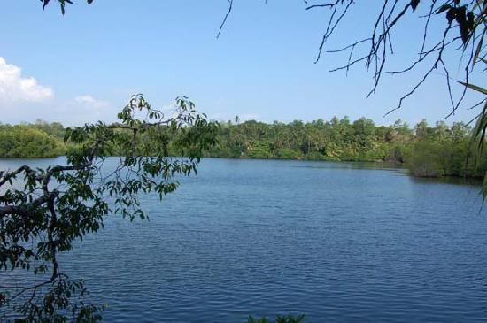 Villa Birdlake: the beautiful lake view
