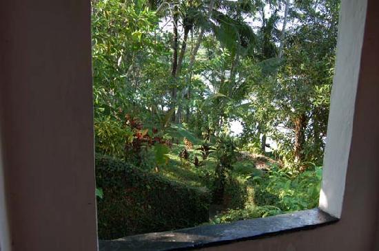 Villa Birdlake: view through our room