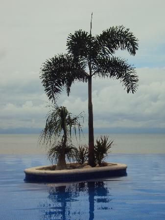 Los Picos Hotel & Suites: HOTEL LOS PICOS, BUCERIAS