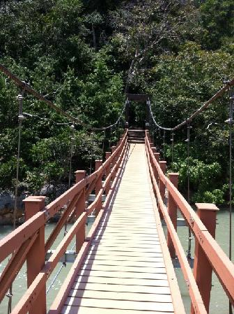 Penang National Park (Taman Negara Pulau Pinang): Welcoming Suspension Bridge