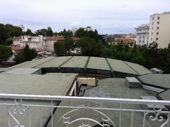 Hotel President Terme: VIEW