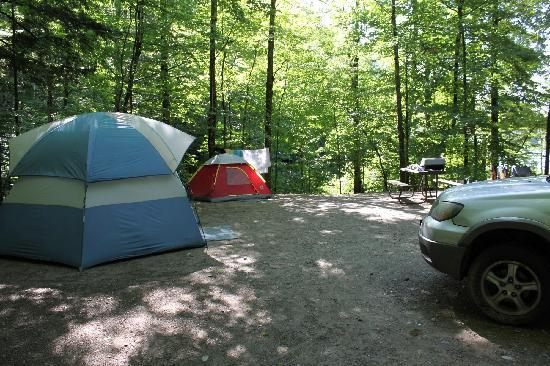 Half Moon State Park: Campsite #11