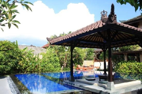 Fat Yogi Cottages: charming pool