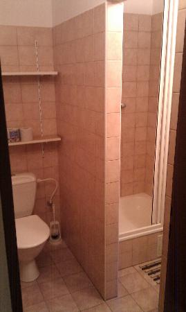 Dizzy Daisy Hostel Praha: clean and basic bathroom en suite with shower and sink