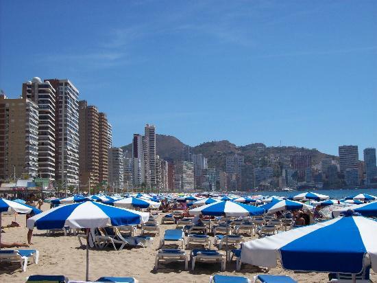 Servigroup Diplomatic: benidorm playa