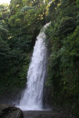 Yoro-cho, Japan: 滝①