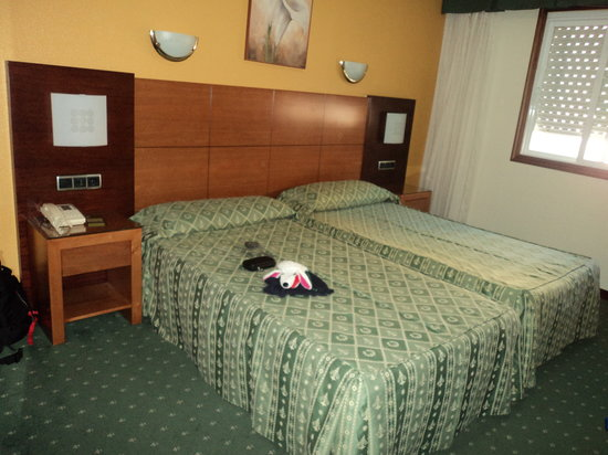 Hotel Virgen del Camino