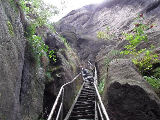 Saxon Switzerland National Park: Treppe im Nationalpark