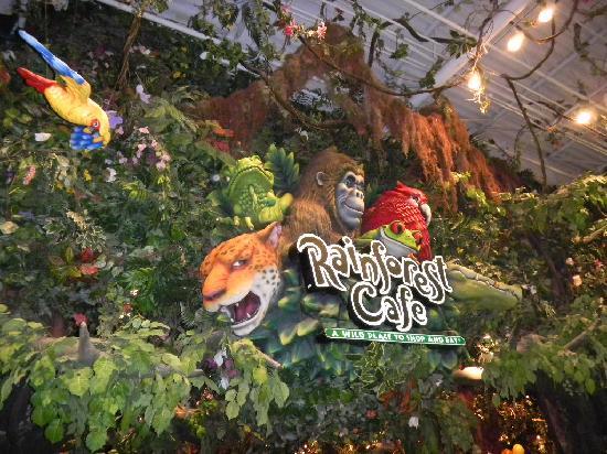 外観 Picture Of Rainforest Cafe Ontario Tripadvisor
