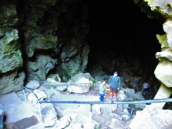Lava River Cave 사진