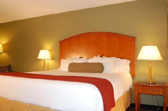 Holiday Inn Express Hotel Amp Suites Charlotte Airport