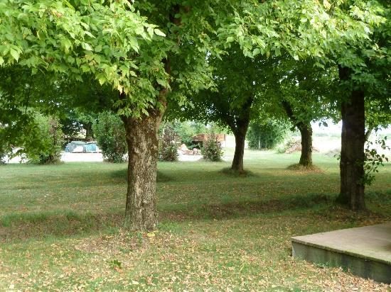 Alla Cedrara Azienda Agrituristica: le parc