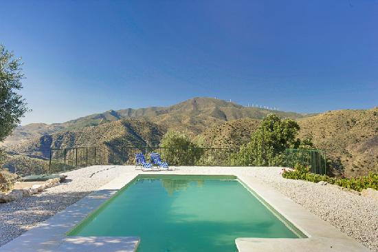 The Olive Branch: View overlooking our pool