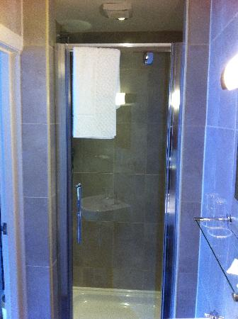 Four Seasons Guest House: Shower