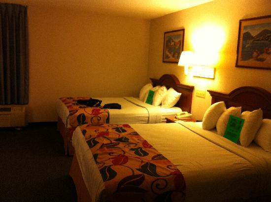 BEST WESTERN Executive Hotel of New Haven-West Haven: Beds
