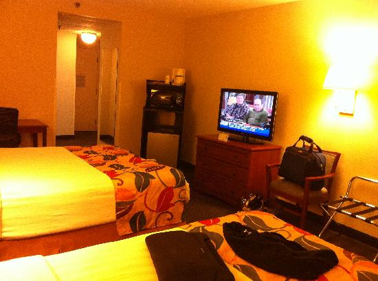 Best Western Executive Hotel Of New Haven-West Haven: TV