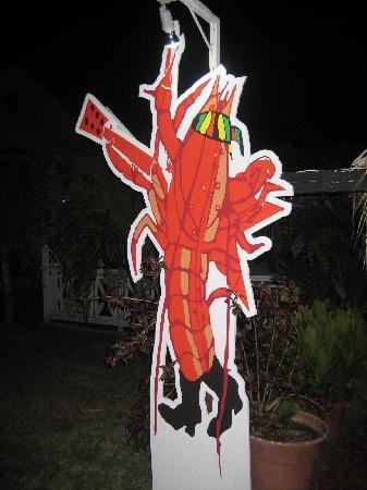 Rock Lobster: Logo