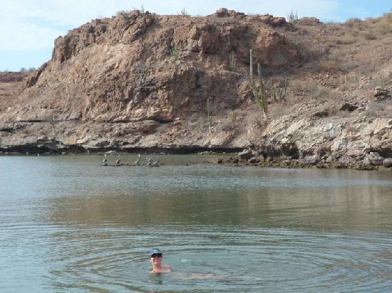 Villa del Palmar Beach Resort & Spa at The Islands of Loreto: The Desert greets The Sea Of Cortez!