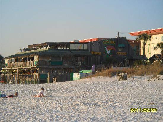 Toucan's Restaurant: VIEW FROM THE BEACH
