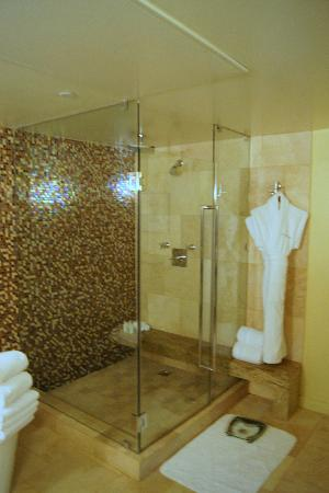 Giant shower with great water pressure in the villas at the Sunset Marquis