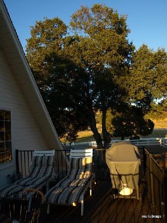 Rancho Bernardo Bed & Breakfast: The nice balcony