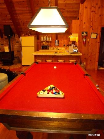 Rancho Bernardo Bed & Breakfast: The snooker table