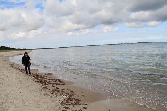 Mecklembourg-Poméranie occidentale, Allemagne : Juliusruh Beach
