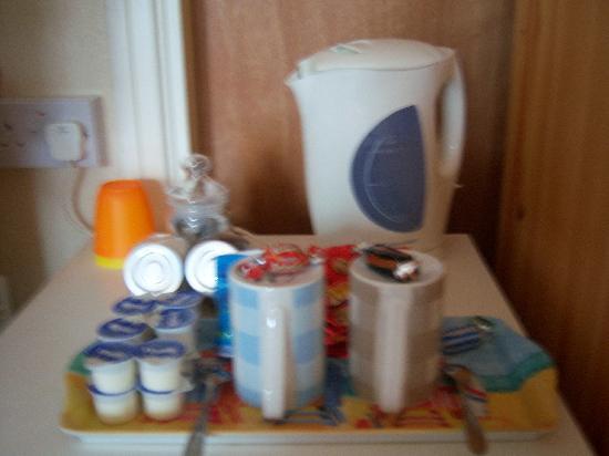 Rushdene Bed & Breakfast : Tea/coffee facilities