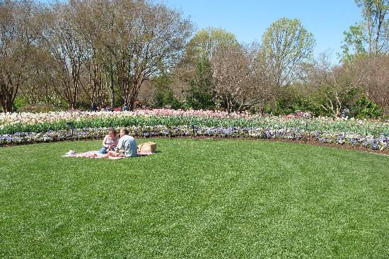 สวนรุกขชาติและพฤกษชาติดัลลัส: great place for a picnic!