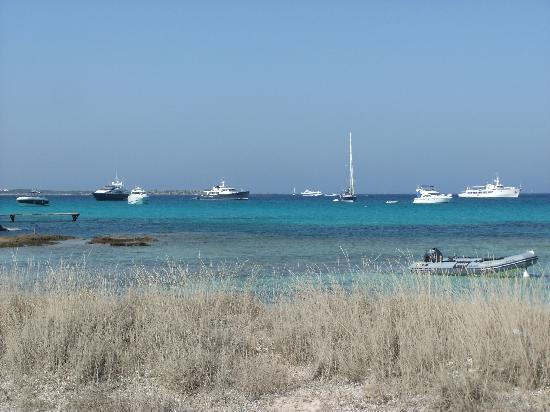 Hostal Roca Plana: lungo mare vicino all hotel