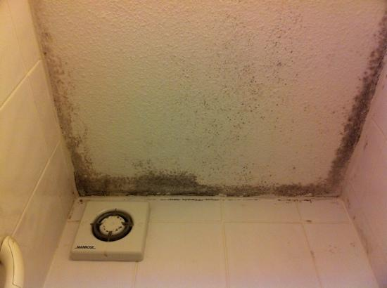 Northcote Hotel: mould and bad smells...