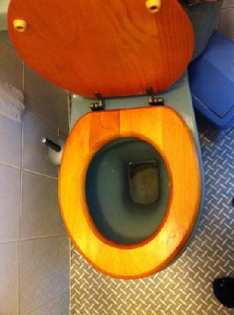 Northcote Hotel: dirty toilet...
