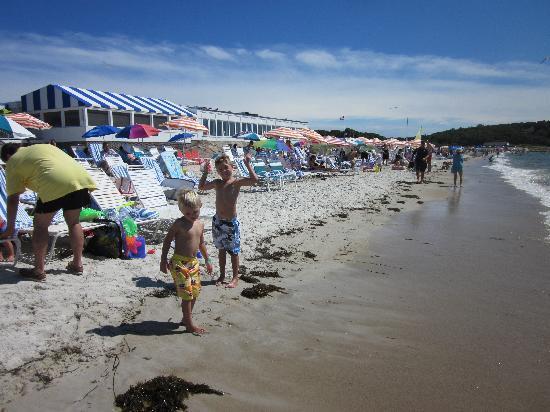 Sea Crest Beach Hotel: The beach!