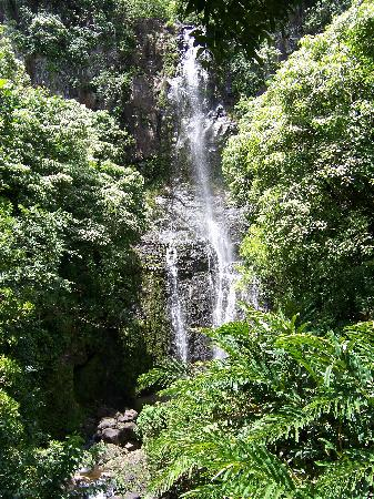 Valley Isle Excursions: Many waterfalls