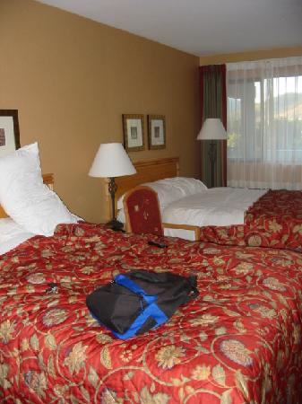 Accent Inn Kelowna: clean rooms