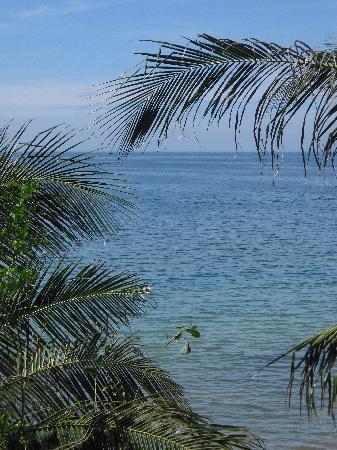 Novela Muine Resort & Spa: View from bedroom window