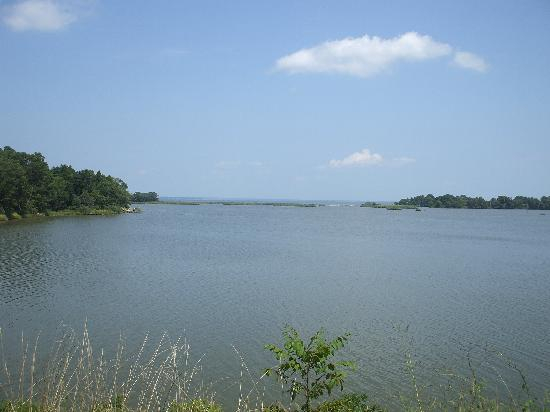 Colonial Beach, VA: Pope's Creek in the foreground, Potomac in the background