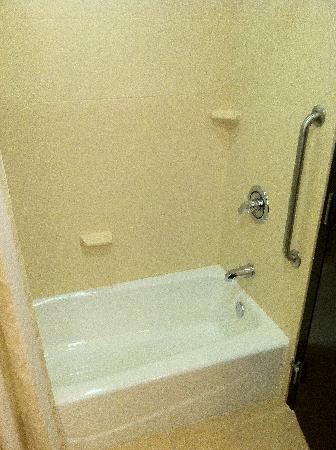 Hilton Garden Inn DFW North Grapevine: bathtub and shower
