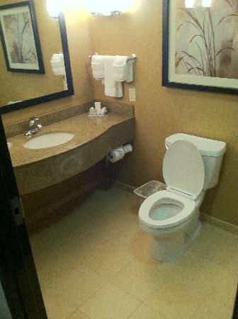 Hilton Garden Inn DFW North Grapevine: sink and toilet