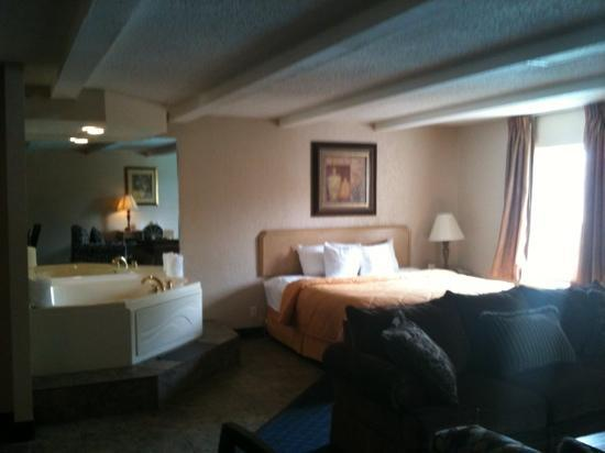 Comfort Inn St Louis - Westport Photo