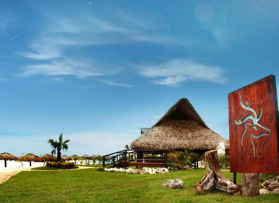 Blue Venado Beach Club: paradaise beachclub