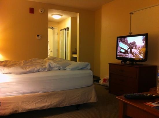 Nice room tv refrigerator and microwave picture of for Nice hotels downtown chicago