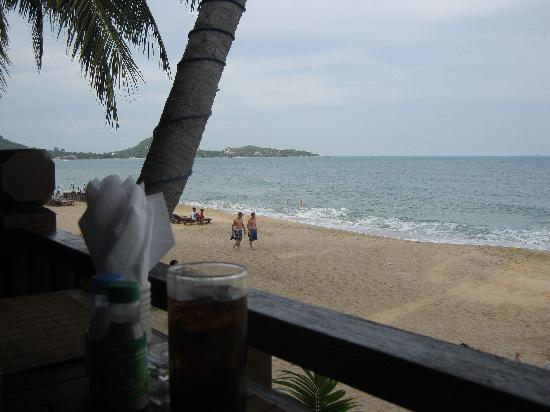 Bill Resort: View from the restaurant.
