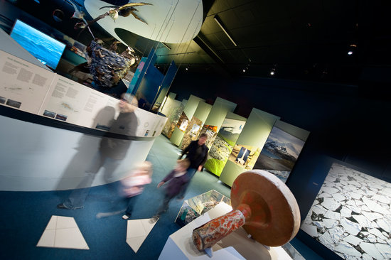 Tasmanian Museum and Art Gallery: Islands to Ice: The Southern Ocean and Antarctica